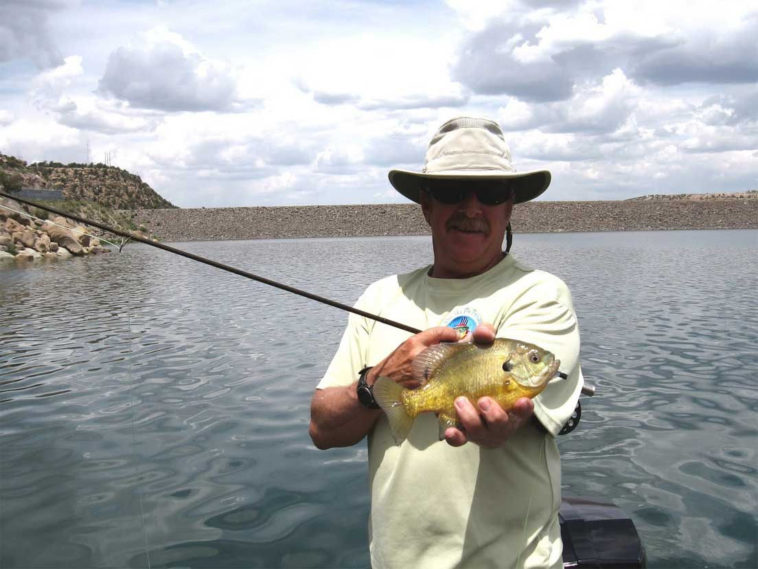 Fishing navajo lake outdoors new mexico for Fishing new mexico