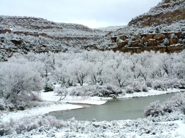 Snowed in Simon Canyon on the San Juan River at Navajo Dam in northwestern New Mexico.