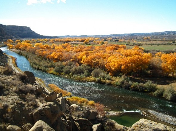 The San Juan River flowing south below the village of Navajo Dam.
