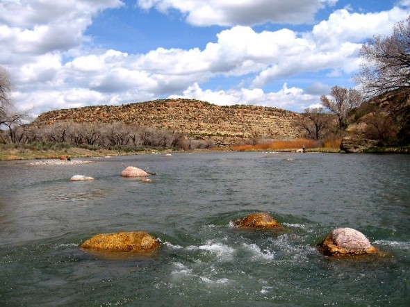 A view from in the water of the San Juan River in New Mexico.