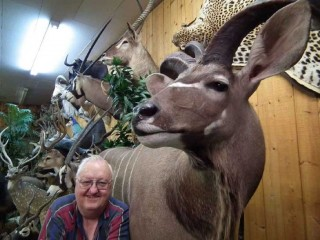 D.L. Gruben poses with his favorite mount, a Greater Kudu.