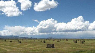 A San Luis Valley, Colorado, farm.