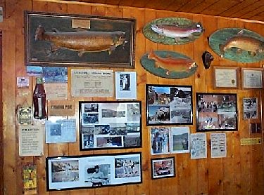 Trophy trout mounted on office wall at El Vado ranch on the Chama river in northern New Mexico.