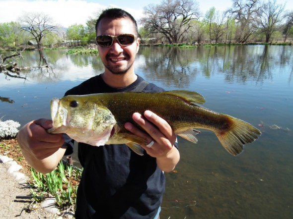 Leo Salcido of  Albuquerque, shows of a nice, fat, bigmouth bass he caught  at Shady Lakes.