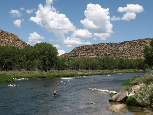angler fishing in San Juan River