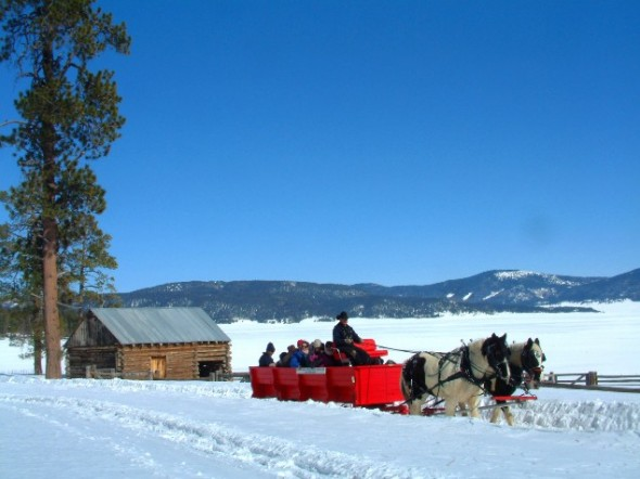 A horse drawn sleigh in the snow at Valles Caldera National Preserve in northern New Mexico.