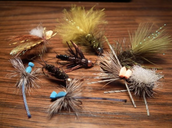 Assortment of dry flies for fishing.