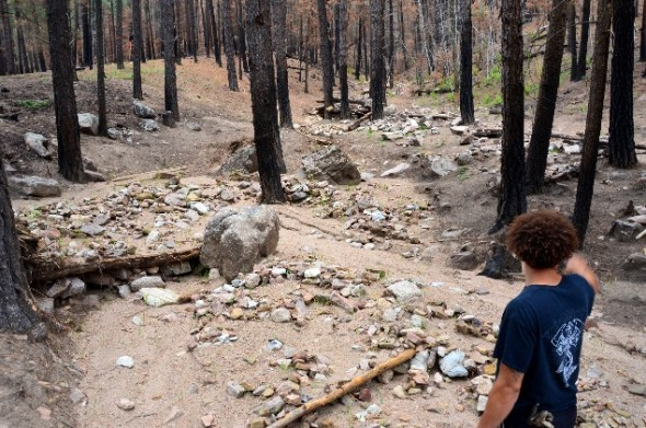 Scorched trees, rocks and other debris from floods in burned forest.