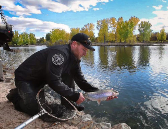 N.M. Dept. of Game and Fish stocks a large trout at Tingle Beach
