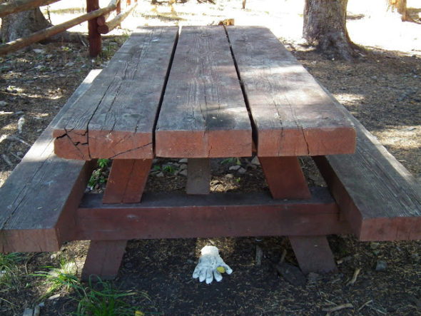 white glove under picnic table